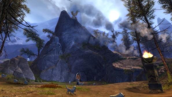 wayfarer foothills-wolf1